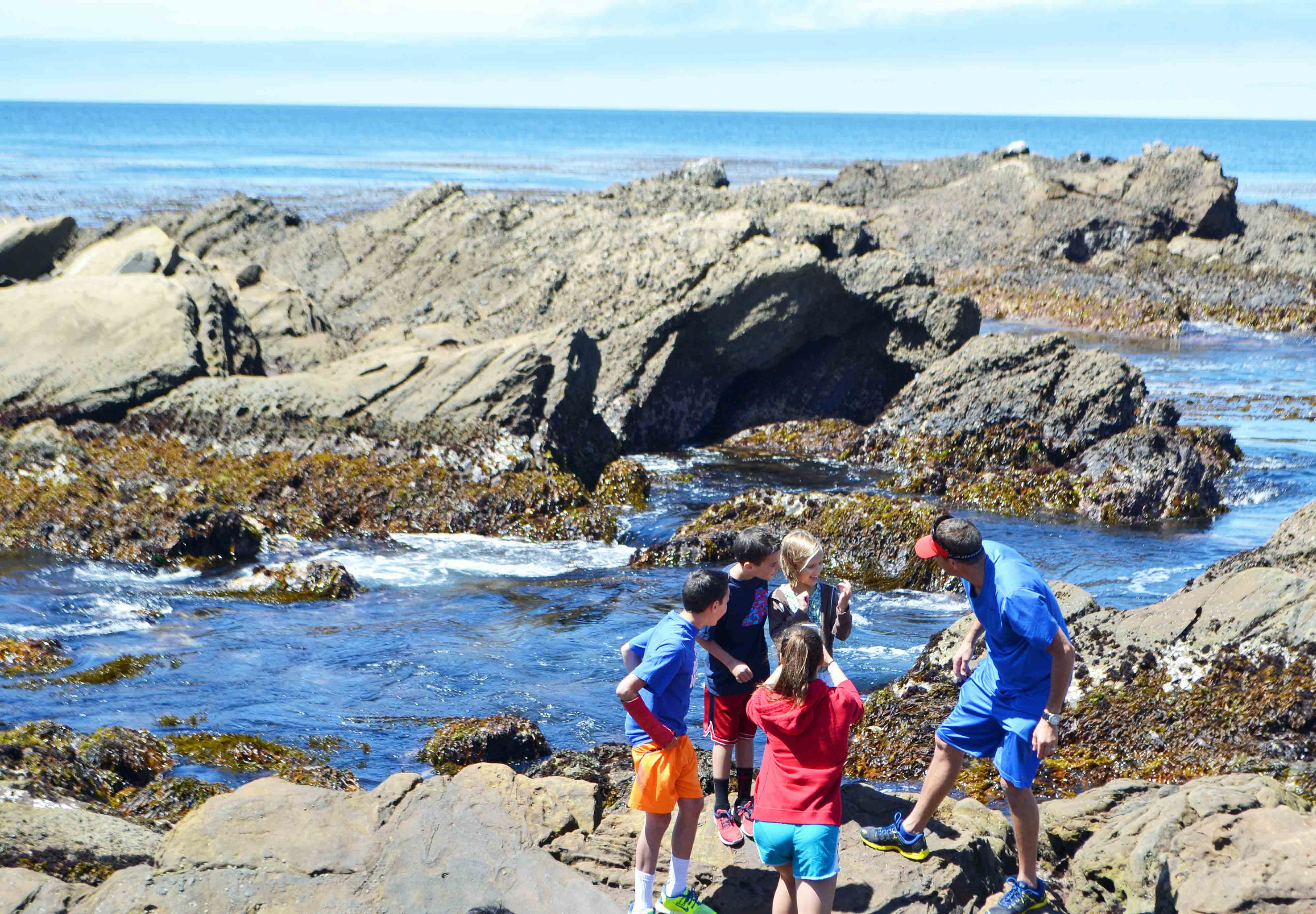 Tide Pools Point Lobos California Pacific Coast Highway 1 Road Trip