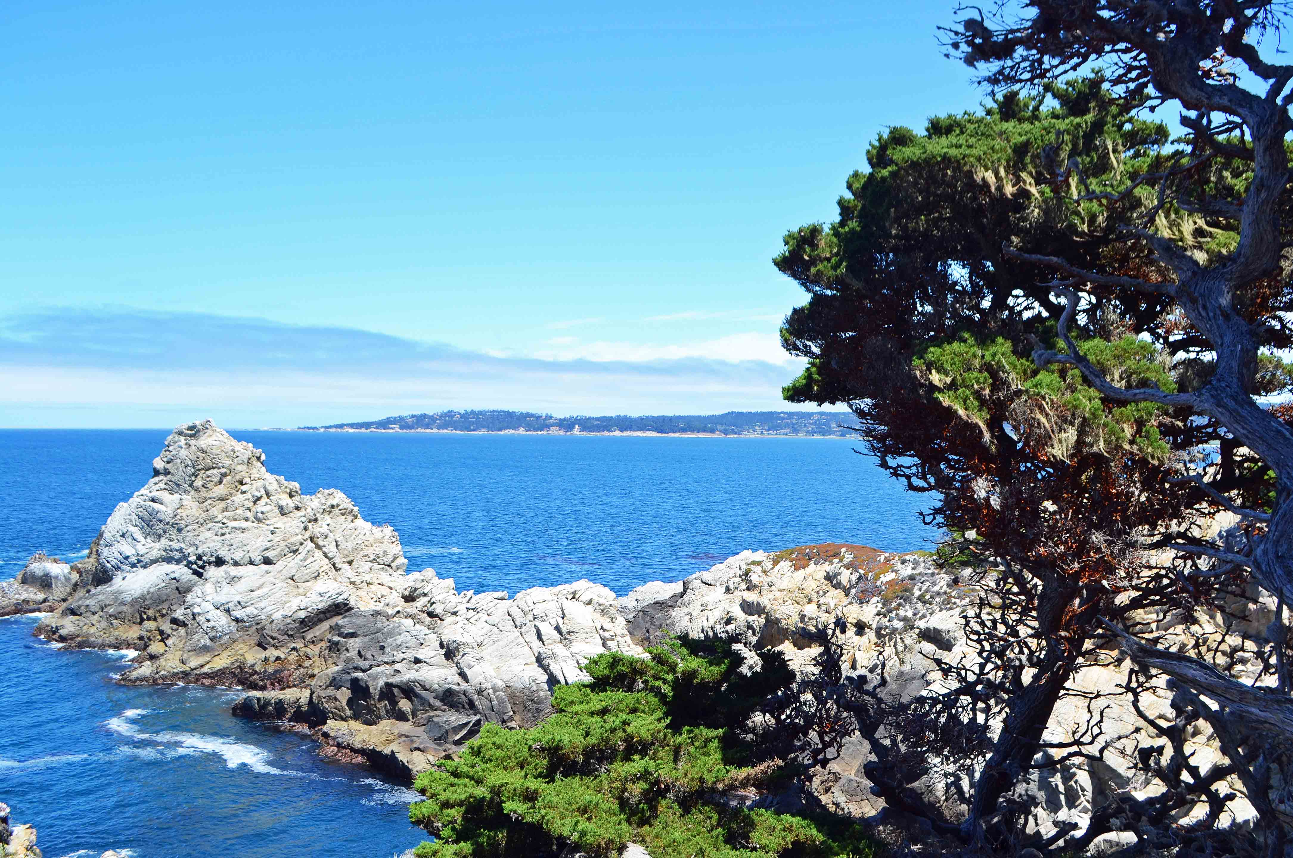 Point Lobos Reserve California Pacific Coast Highway 1 Road Trip Guide