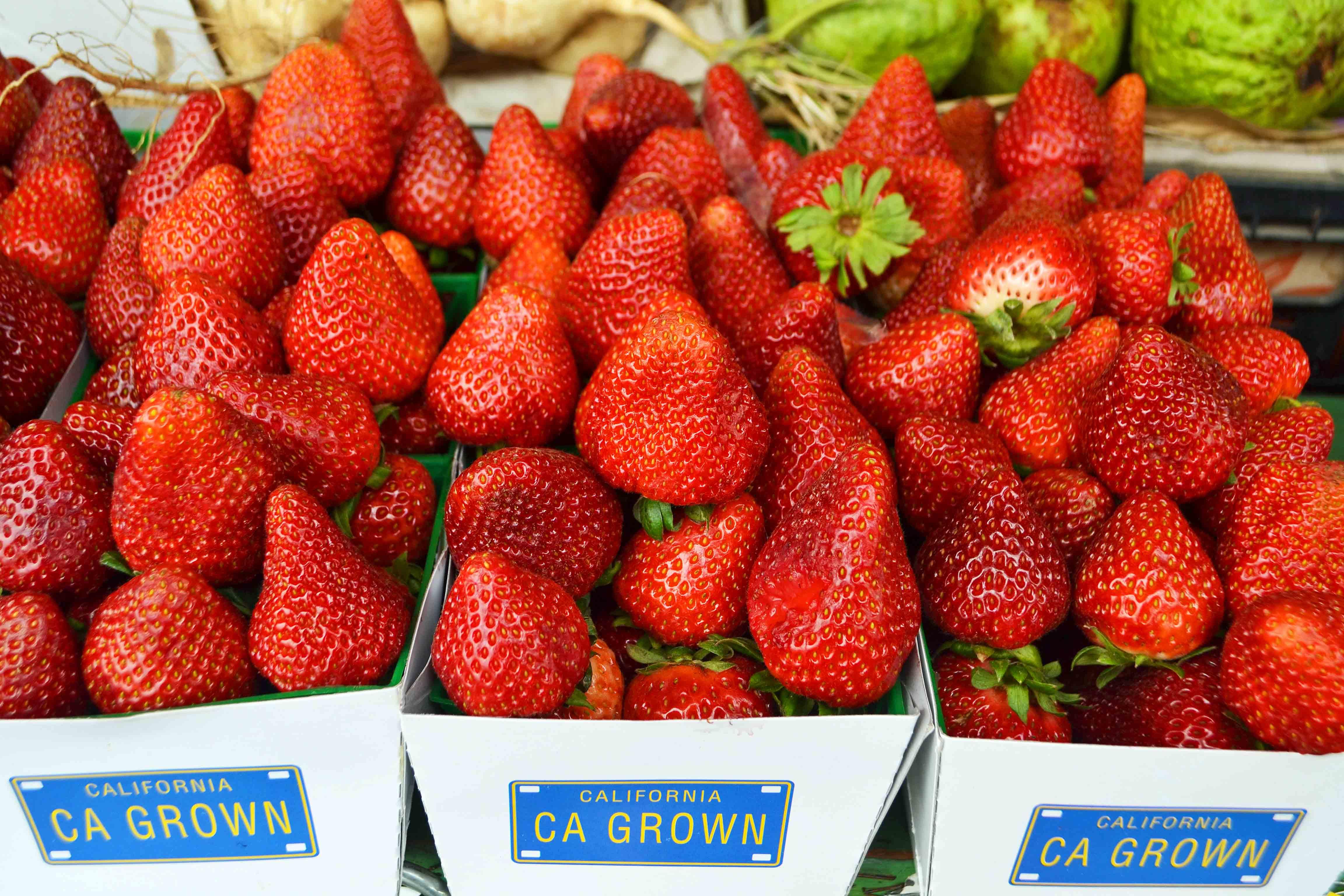 California Pacific Coast Highway 1 Road Trip Guide Farmer's Markets