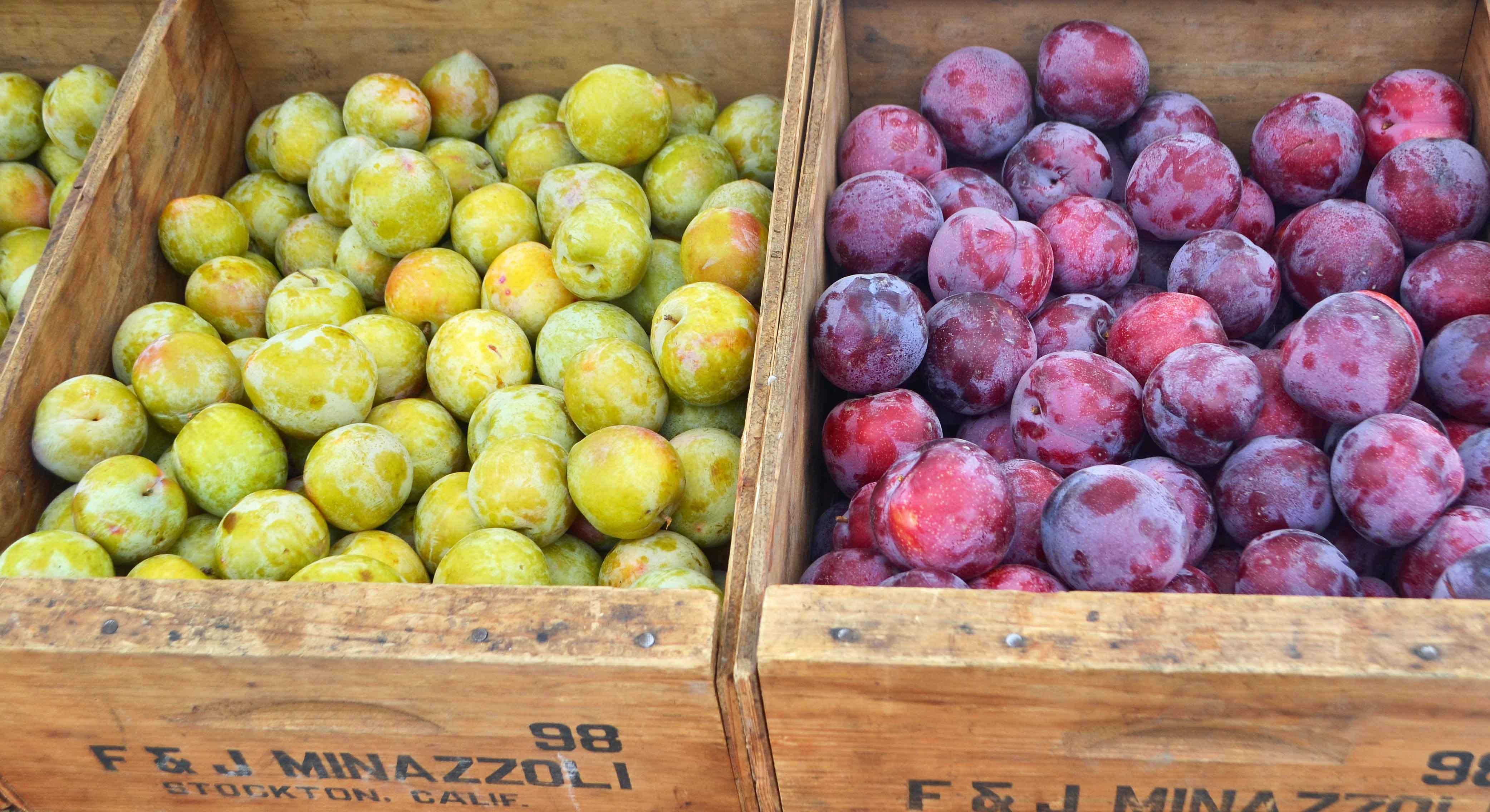 California Pacific Coast Highway 1 Road Trip Guide -- Farmer's Markets