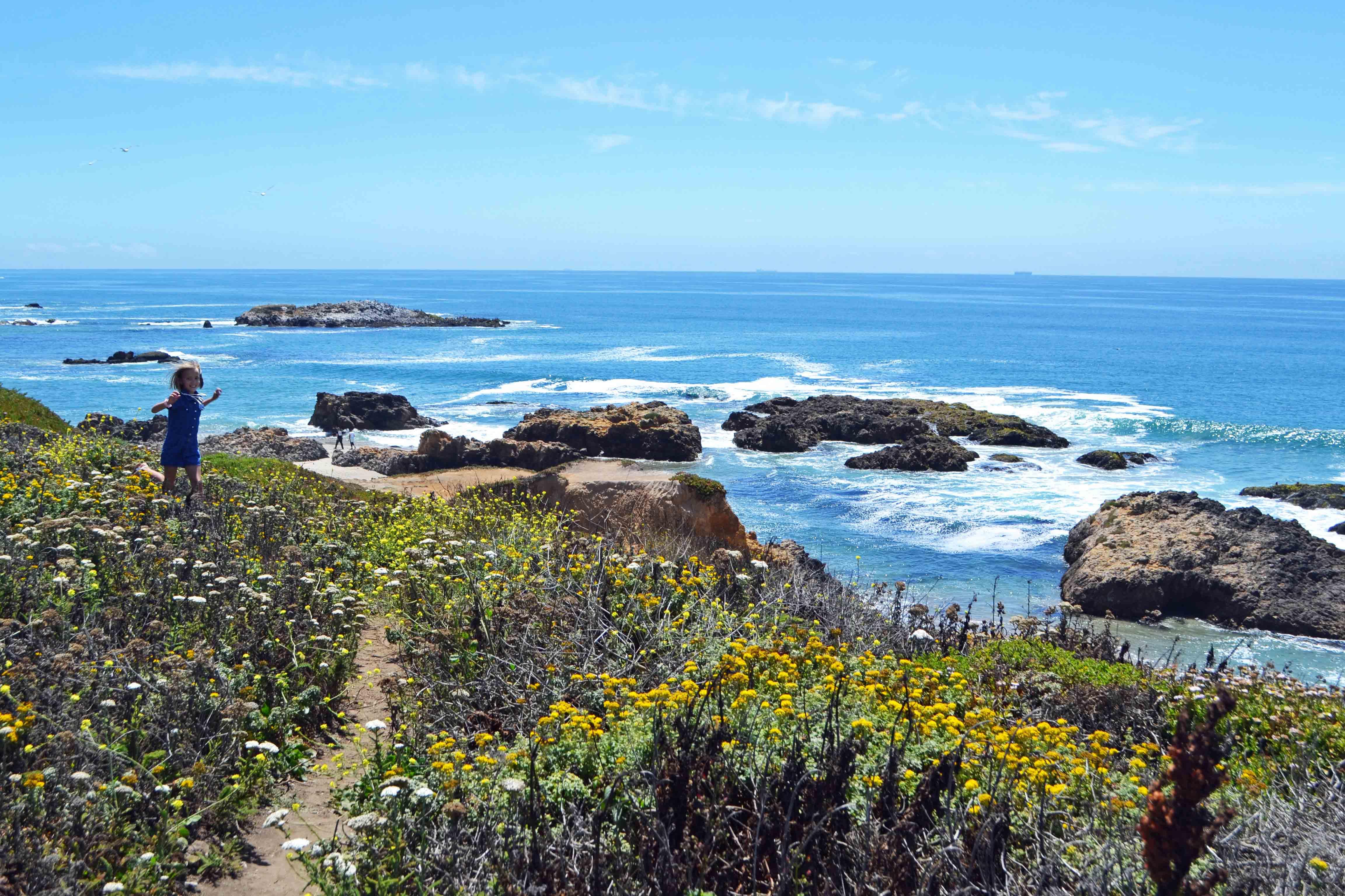 Pescadero Beach California Pacific Coast Highway 1 Road Trip Guide by Modern Honey. www.modernhoney.com