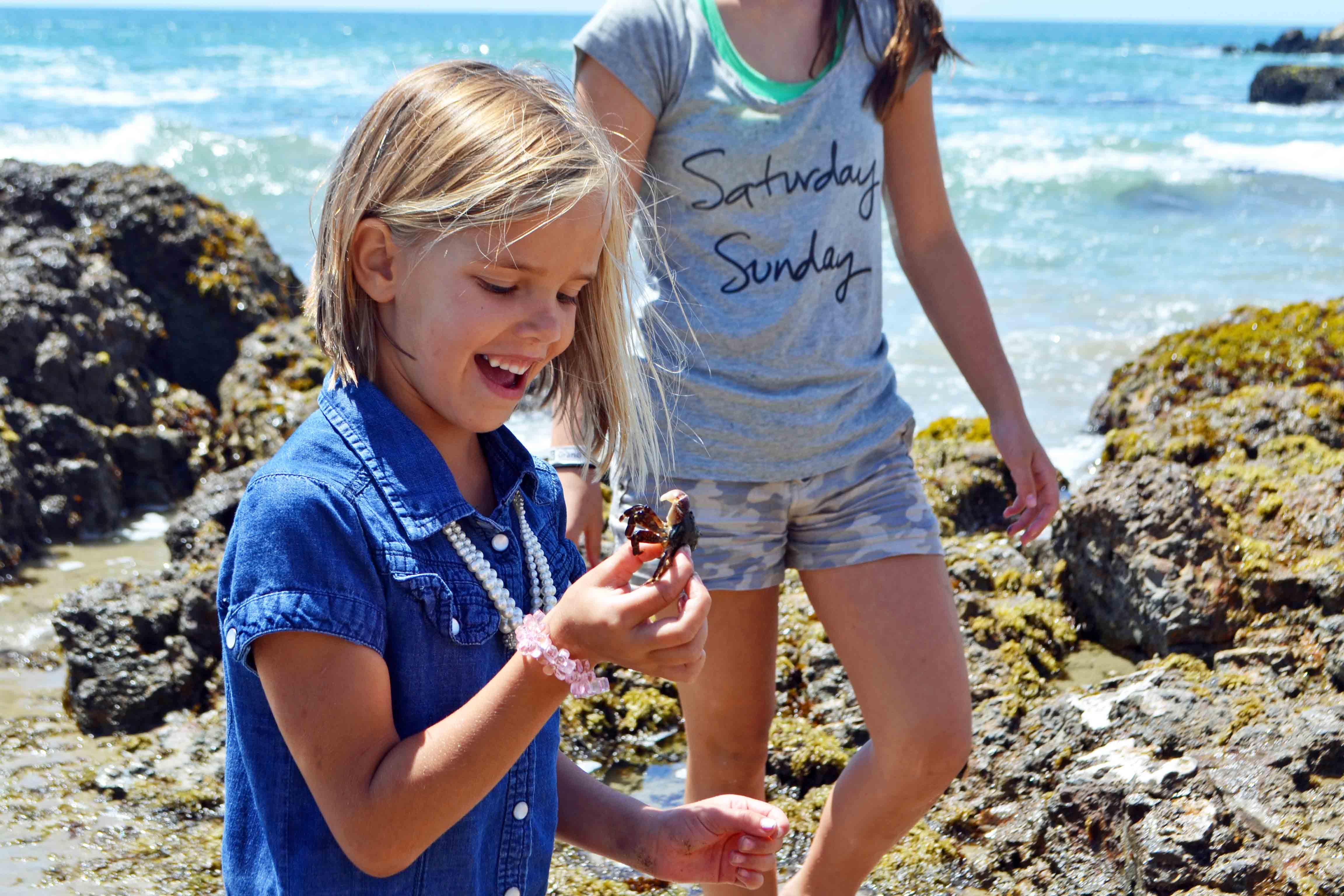 Tide Pools California Pacific Coast Highway 1 Road Trip Guide by Modern Honey. www.modernhoney.com