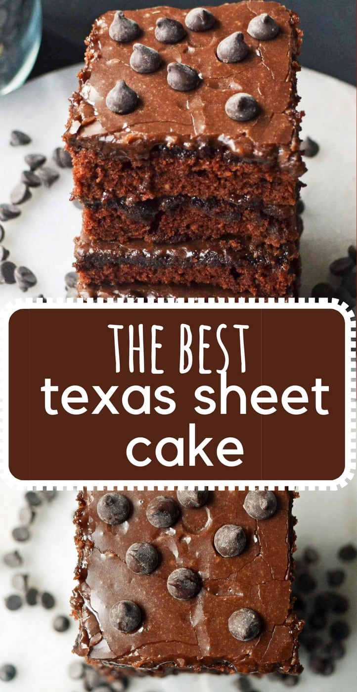 How to make the best chocolate texas sheet cake. Moist chocolate cake with rich chocolate frosting is always a huge hit! www.modernhoney.com