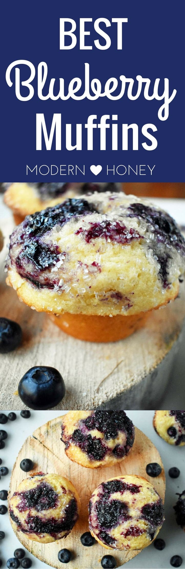 The BEST Blueberry Muffins by Modern Honey. Made with fresh blueberries, buttermilk, and a combination of sweet butter and oil. The perfect blueberry muffin recipe! www.modernhoney.com