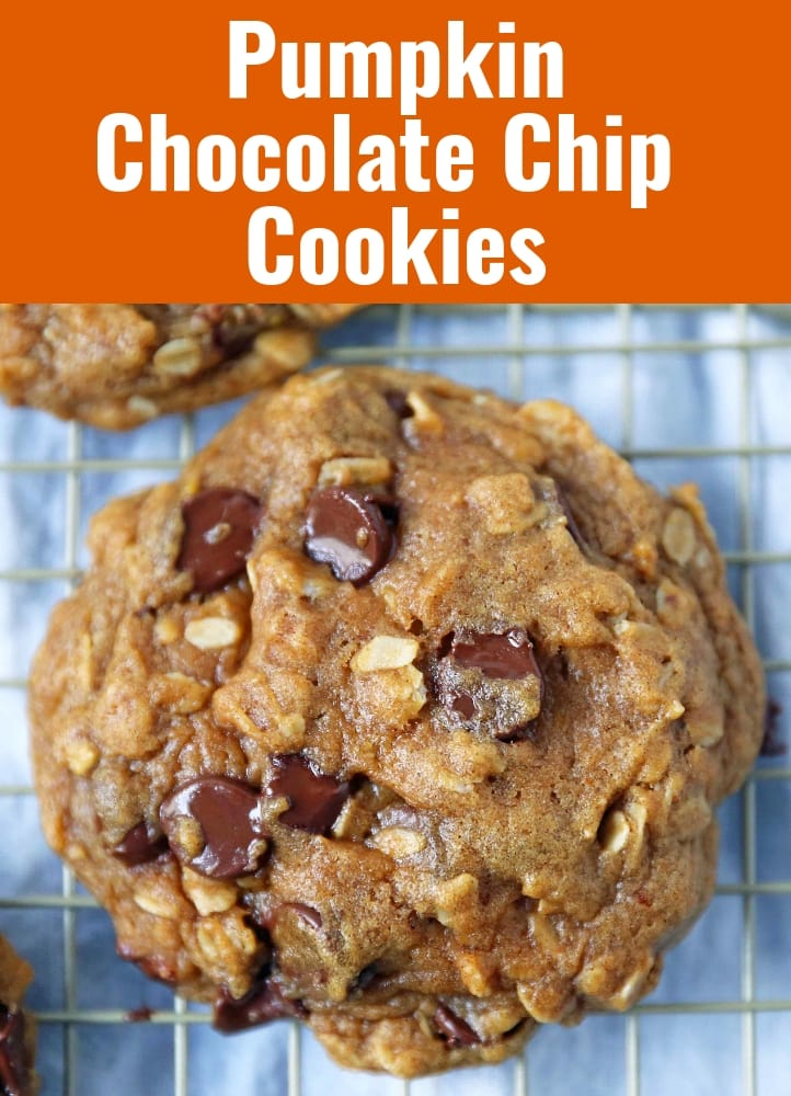 Pumpkin Chocolate Chip Cookie Recipe. The BEST Chocolate Chip Pumpkin Cookies. Saucepan Pumpkin Chocolate Chip Cookies are the perfect Fall Cookie. A browned butter pumpkin chocolate chip cookie. www.modernhoney.com #pumpkinchocolatechip #pumpkincookie #pumpkinchocolatechipcookie #fallcookie #pumpkinrecipe