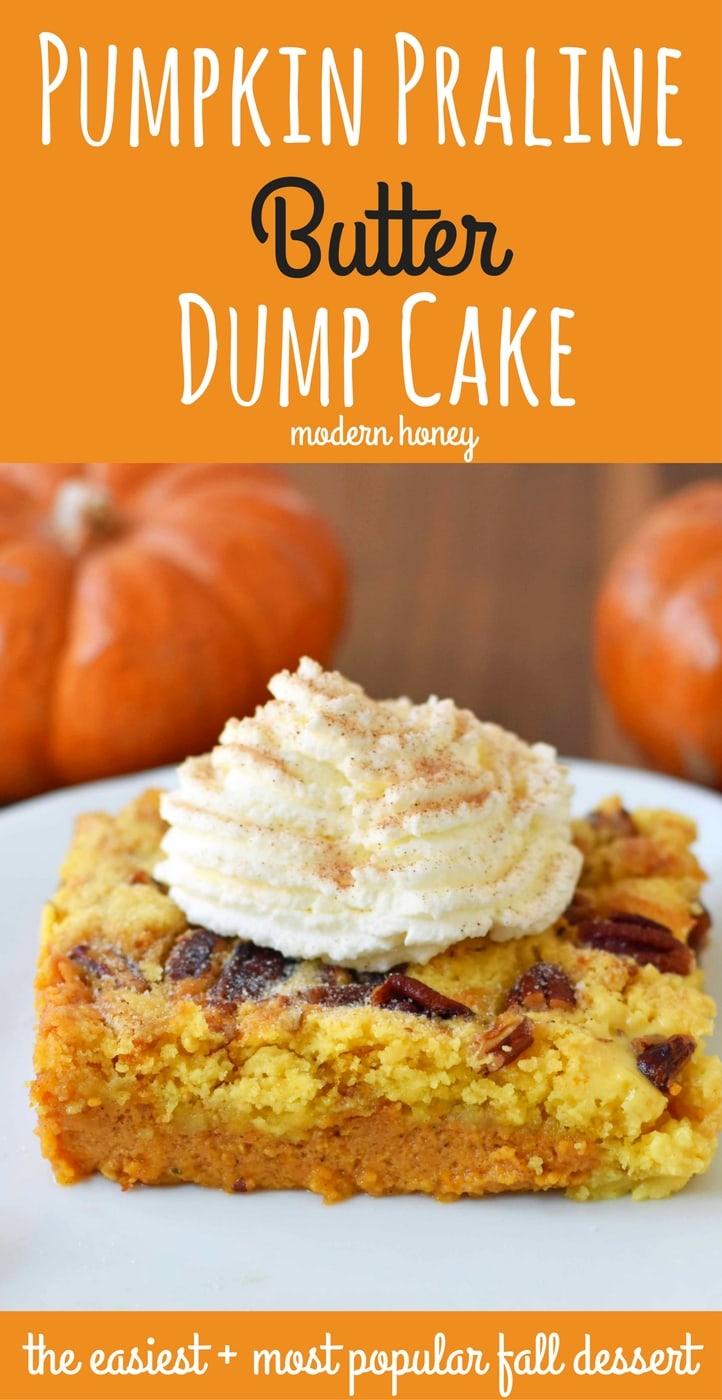 Pumpkin Praline Butter Dump Cake. Pumpkin custard filling baked with a buttery crunchy cake topping. This is the perfect pumpkin Fall dessert. www.modernhoney.com