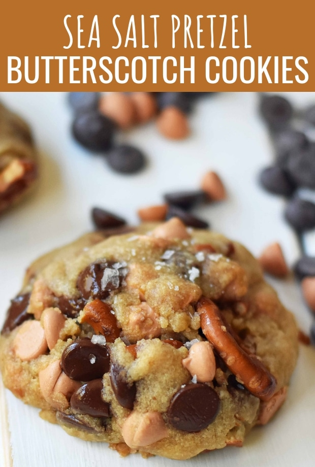 Sea Salt Pretzel Butterscotch Cookies. Cookies with butterscotch chips, pretzels, and chocolate chips. The perfect salty sweet cookie. www.modernhoney.com #butterscotchcookies #pretzelcookies #butterscotchpretzelcookies #saltysweetcookies