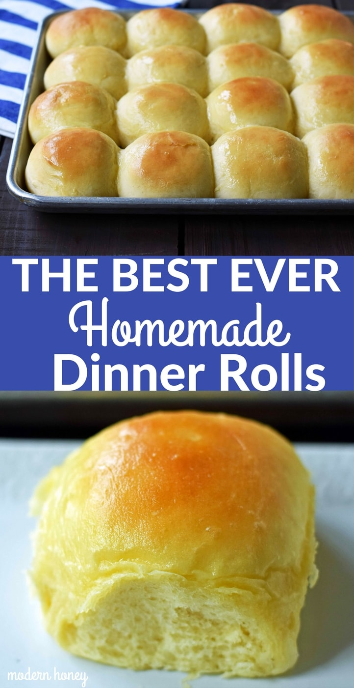 The BEST EVER Homemade Dinner Rolls. How to make perfect homemade rolls at home. Tips and tricks to make the best homemade rolls. www.modernhoney.com