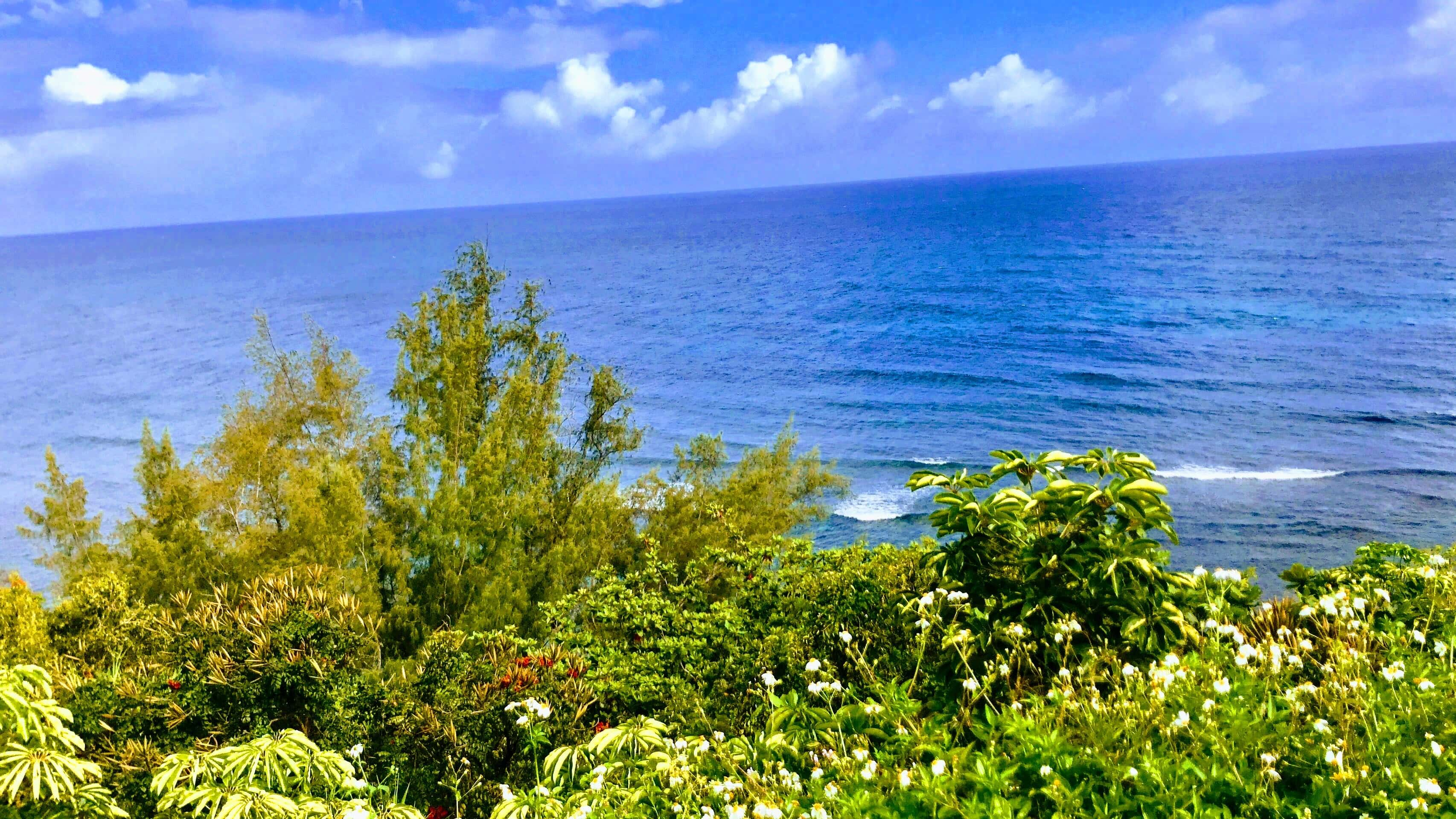 Views from Princeville Puu Poa Condos